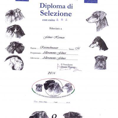Diploma selezione Hermann